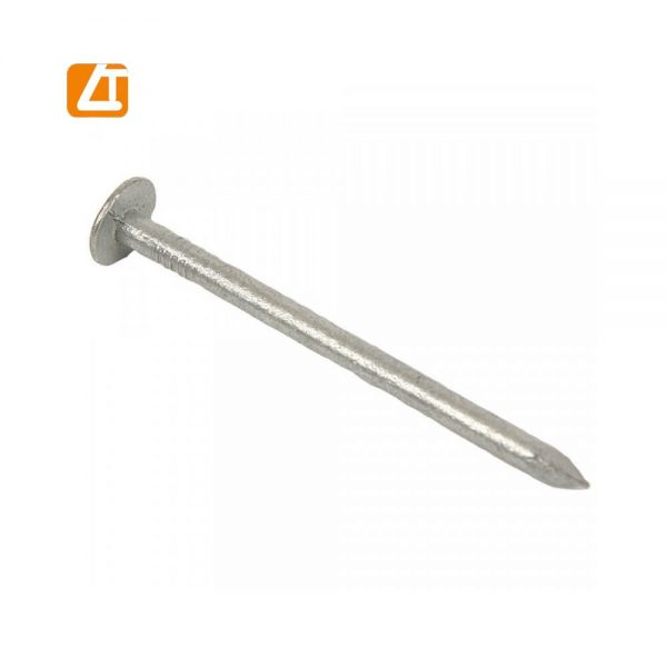 Hot dipped galvanized clout nail