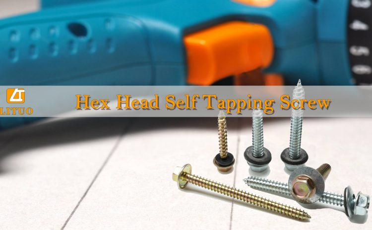 About Hex Head Self Tapping Screws